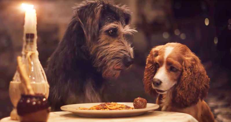 Disney+ releases an adorable second trailer for its 'Lady and the Tramp' remake.