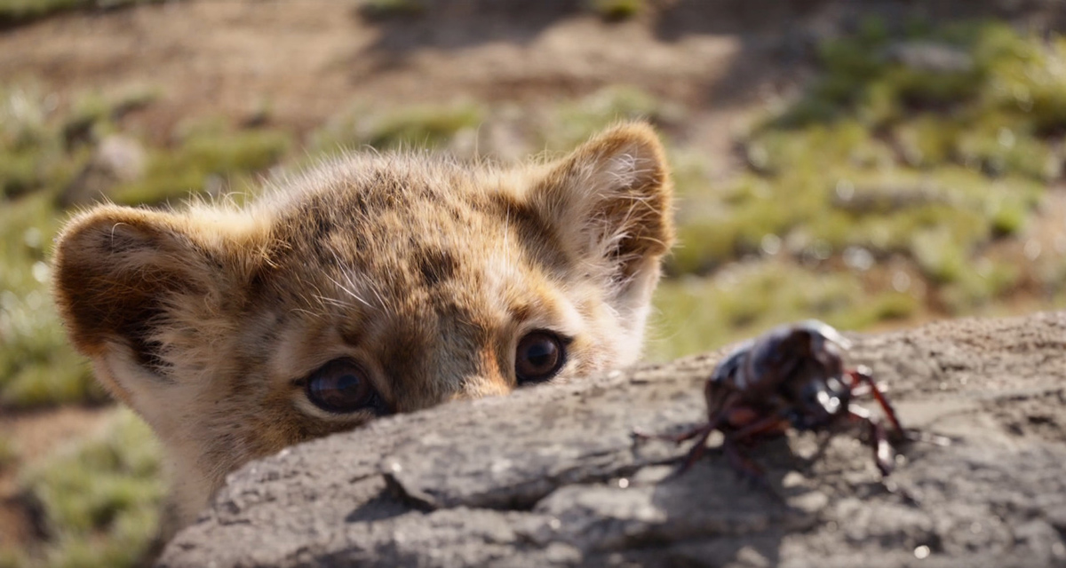 Watch on in awe with the stunning new trailer for 'The Lion King'